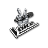 Logo of The Voice Africa, a Digital Virgo Partner